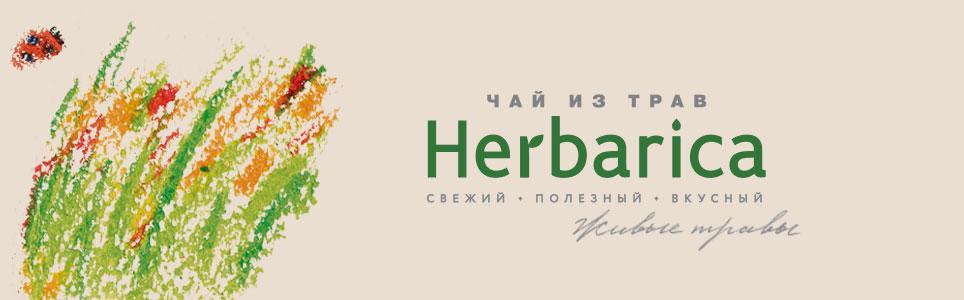 Разработка упаковки травяных чаев