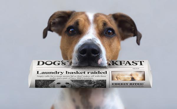 DogsDinner (5)