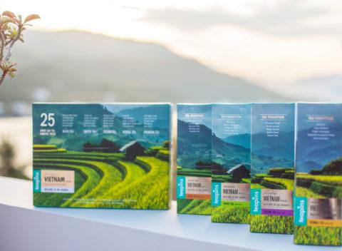 Tea brand Teapins redesign. Traveler tea line.